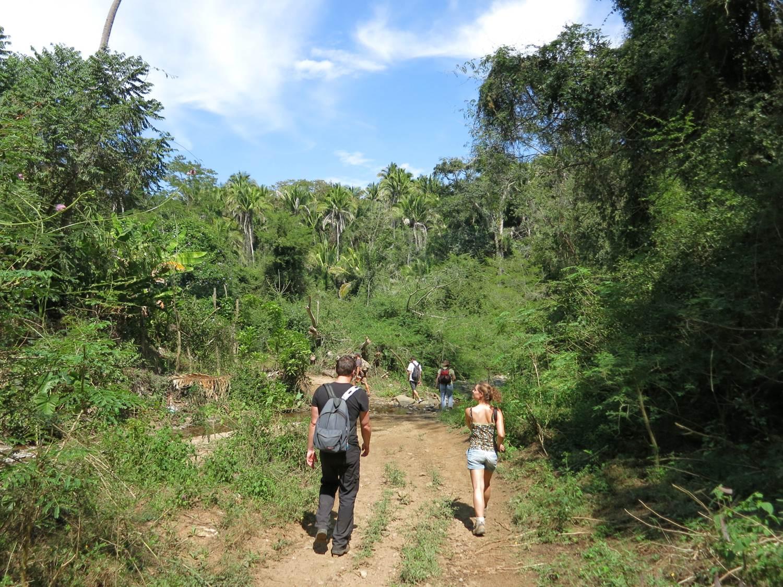 Steve´s Educational Jungle Hikes near Sayulita